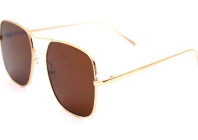 Óculos Solar RC 17005 C1