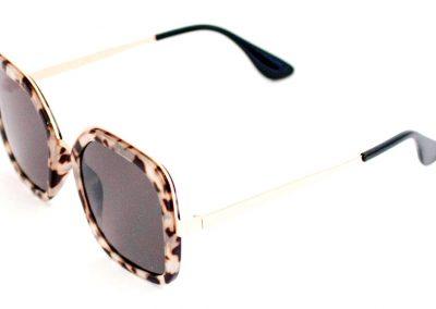 Óculos Solar B 1014 C2